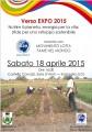 Verso EXPO_MLFM a Somaglia