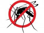 Disinfestazione dalla zanzara tigre, della rete fognaria e delle aree verdi comunali
